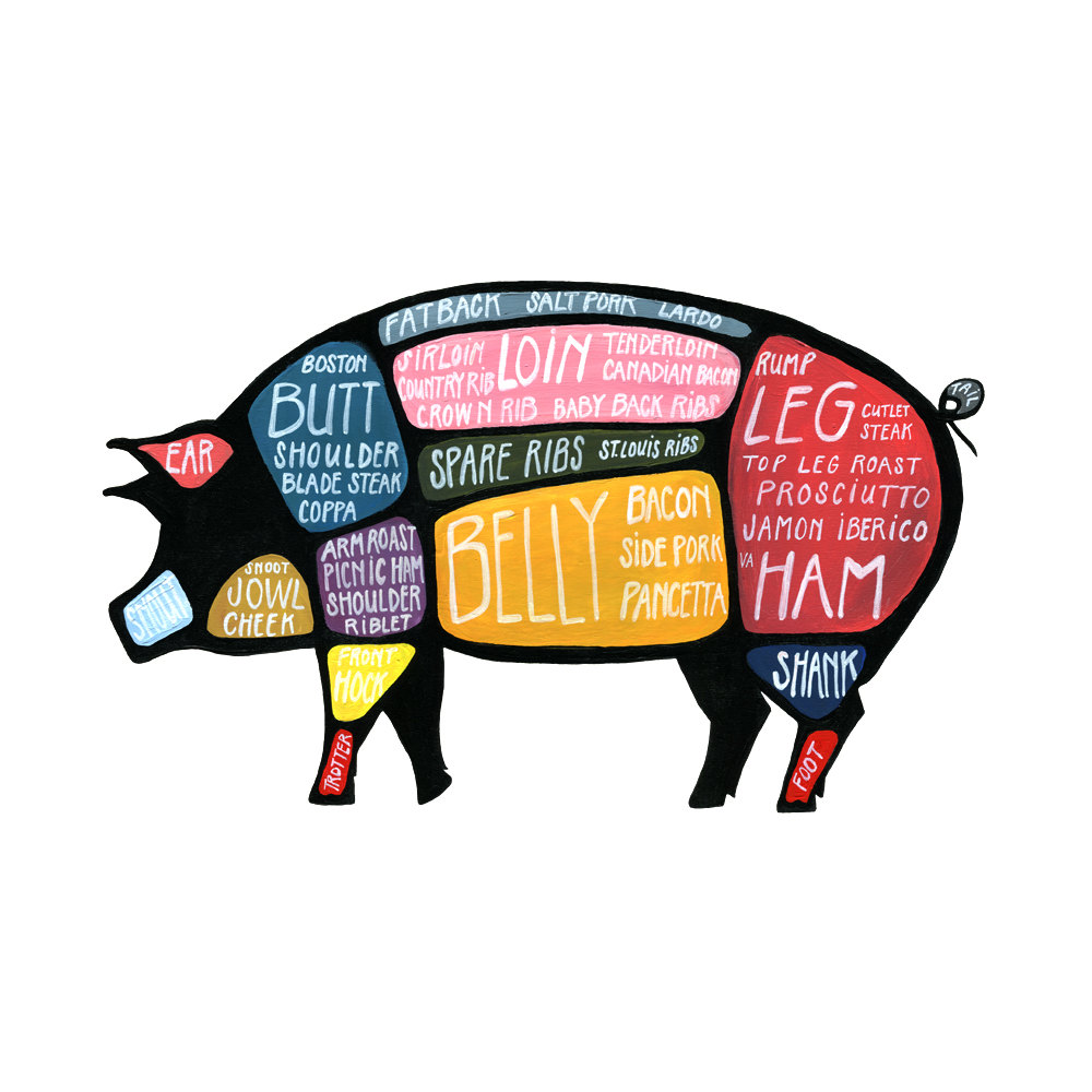 Pigs | Callywood Farms